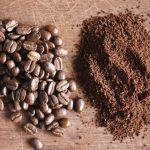 Sip Coffee & Plant a Tree